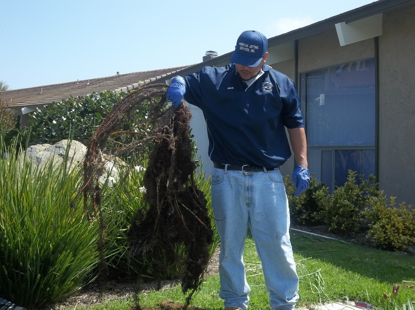A wicked root can clog your sewer line, hydro jetting can help